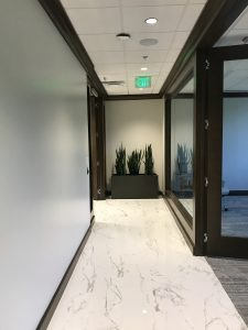 hallway in office building with plants at the end underneath an exit sign